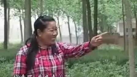 安徽民间小调《瘸女人逛街第一集 》