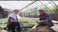 《乡村爱情9》30集大结局
