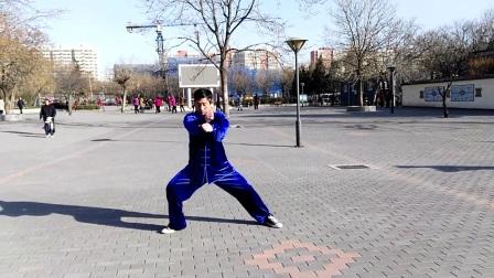王明演练陈式心意混元太极拳48式
