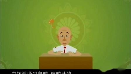《串调》侯宝林 郭启儒 2020动画相声 满满是梗