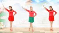 玫香广场舞《高粱红》正背面附口令教学