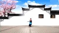 张春丽广场舞《凉凉》正背面演示与分解教学