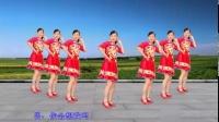 玫香广场舞原创《爱上一朵花》正背面附教学